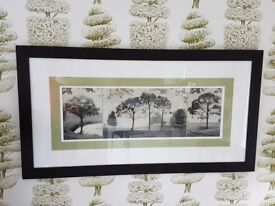 Picture of trees in black frame, oblong