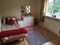 Clifton Nottingham £350 pcm -All inclusive home share with owner , great location