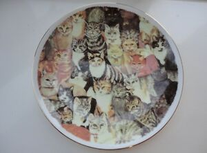 Royal Vale bone china collector's plate - Cats - Cat lovers