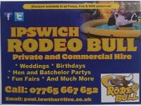 Ipswich rodeo bull