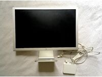 "Apple cinema screen 21"" with cables"