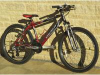 Dema Mountain Bike
