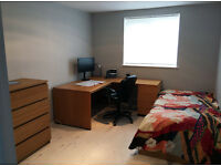Spacious room in newly refurbished flat