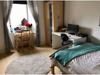 Large double room in bright spacious flat