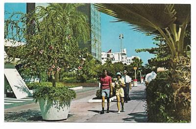 Vintage Florida Chrome Postcard Miami Beach Shopping Area Lincoln Road Mall (Lincoln Shopping Mall)