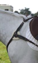 Southern Stars Breastplate brand new $150 Ourimbah Wyong Area Preview