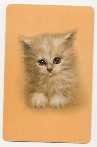 Swap Playing Cards 1 single Giordano Cat Kitten APRICOT