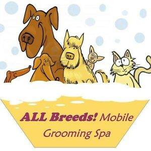 Mobile Certified Groomer
