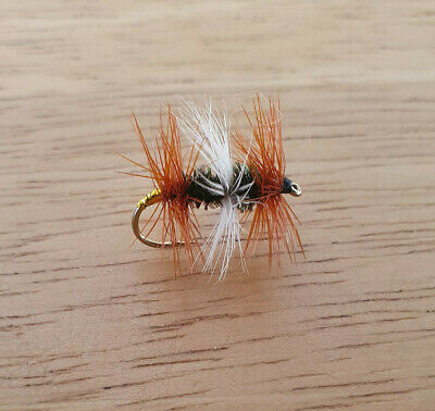 6  DARK CAHILL SIZE  18 LIGAS FLY FISHING FLIES