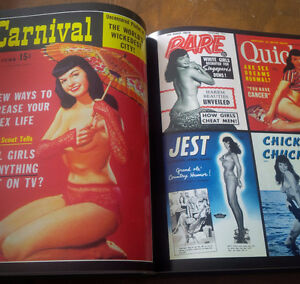 Book: Bettie Page, Life of a Pin-Up Legend, 1996 Kitchener / Waterloo Kitchener Area image 2