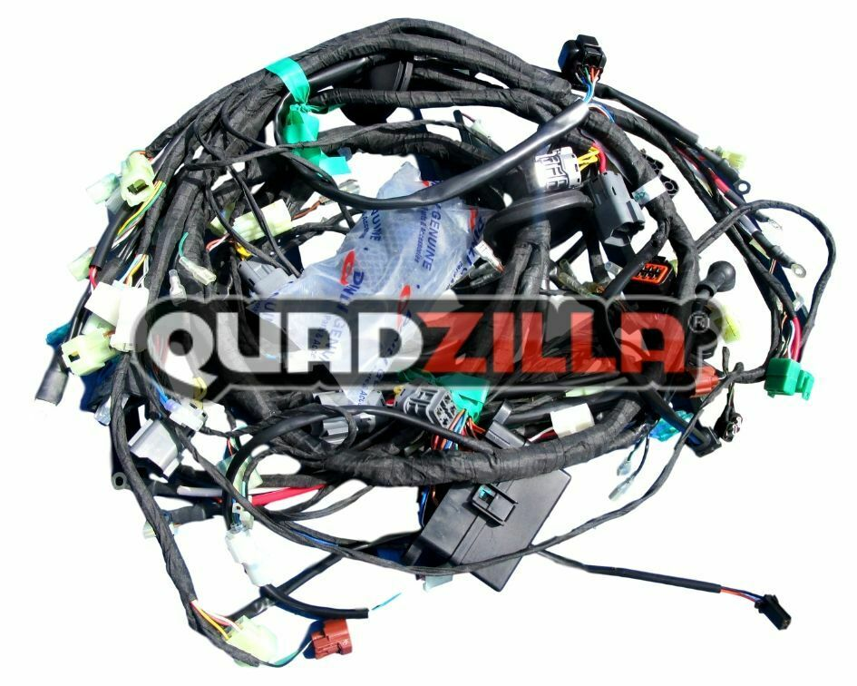 Details about Genuine Quadzilla DINLI RS7 Wiring Loom Complete Harness on