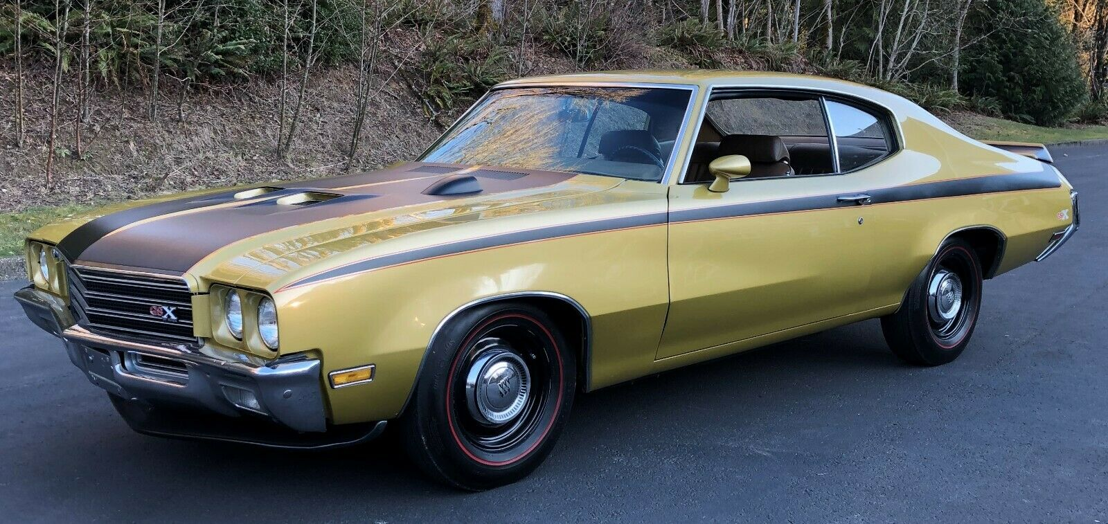 1971 Buick GSX  1971 Buick GSX 2 door sport coupe, Time Capsule car 1 of 124 built by GM in 1971