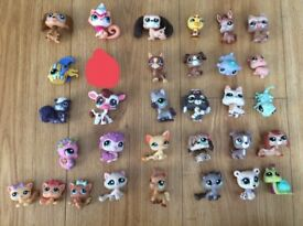 31 x littlest pet shop lps