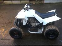"Quadzilla 450 RS Dinli 2013 ""Serious cash buyers only"""