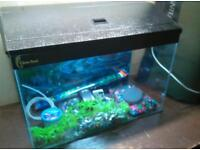 Clear seal fish tank with led lighting