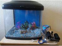 Aquarium tropical fish tank pod 48 L ornaments , gravel, heater, filter MUST GO ASAP