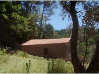13 acre organic fruit, nut & olive farm, in a Portuguese national park, with 3 houses and a retreat