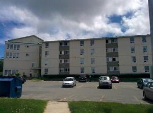 1 Bdrm apartment near Village Mall! 1ST MONTH FREE! St. John's Newfoundland image 2