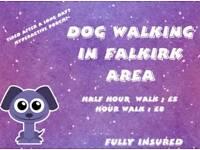 Dog Walking & Grooming