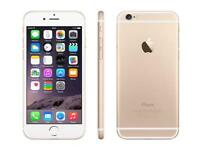 IPhone 6 16gb in gold perfect condition