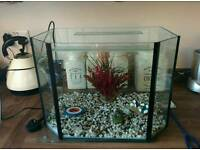 Fish tank aquarium fishtank