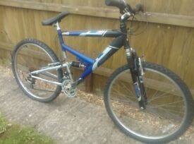 Raleigh Dorado bike £40