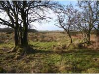 Wanted- Field or woodland to rent. Huddersfield