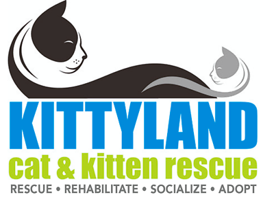 Kittyland Cat & Kitten Rescue