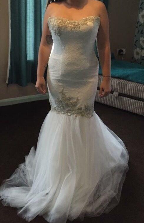 Brand new Size 12/14 fishtail wedding dress | in Plymouth, Devon ...
