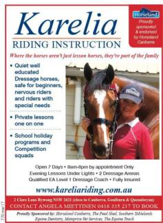 Riding lessons & Trail Rides- All ages and levels