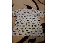 Boys T Shirt age 4-5