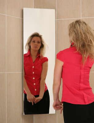 Bathroom Corner Cabinet Mirror Stainless Steel  B1CR 900x300x190mm