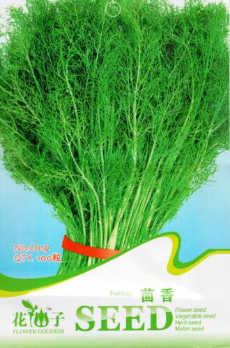 Original Package 100 Fennel Seed Foeniculum Vulgare Aniseed Anise Vegetable C019