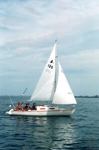 Classic Shark 24 ft. Sailboat for sale with trailer
