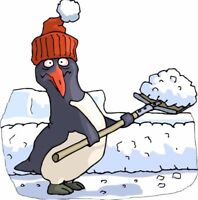 Shoveling available in cobourg