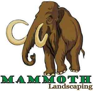 Get Spruced up for Spring with Mammoth Landscaping