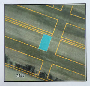 Four Lots for Sale: Near Essex Golf Club in LaSalle, Ontario