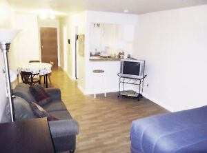 Dorval Monthly Apts,$975/monthly, furnished, no lease wifi incl West Island Greater Montréal image 2