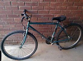 Adult/Teenager bike: Edinburgh Bicycle Contour 100 and optional pannier rack