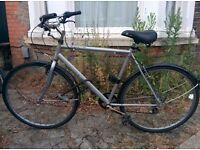 Road Bicycle (inc. bike lock and front/back lights) for sale in Cambridge