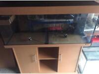 Juwel Rio 240 Aquarium Fish Tank with Stand Filter and heater