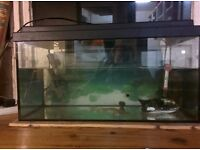 Used fish tank with filter and water heater, light not working, not great condition but very cheap