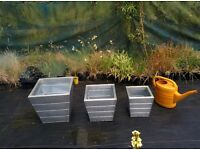 Set of 3 Zinc Planters - Brand New - Rustproof/Frostproof - 2 Sets Available