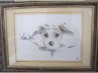 Cute Animal pictures, framed