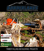 Borderlands Tree Removal Sercvices.