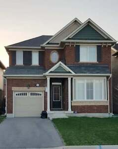 Detached Home Available for Rent in Milton
