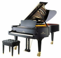 Piano Lessons in Your Home for All Levels