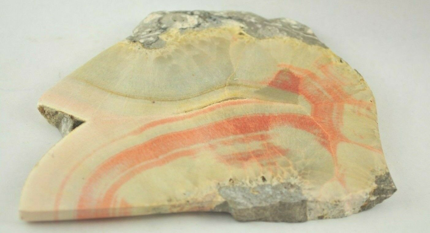POLISHED SLICE OF CELESTOBARITE - GLOUCESTERSHIRE, UK 275 gms 11 x 9 cms