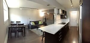 Fully Furnished Executive 1 Bedroom Whyte Ave