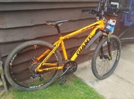 Giant mountian bike